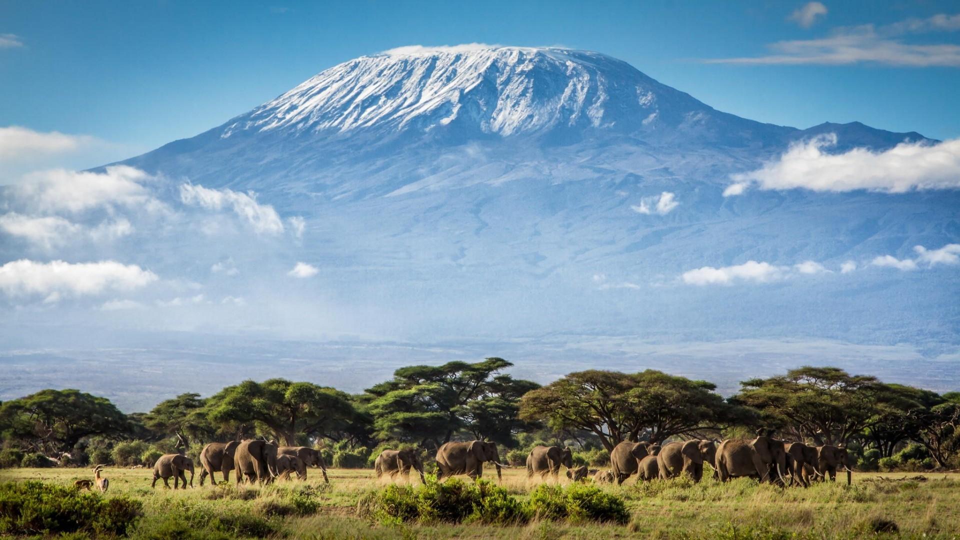 Mt.-Kilimanjaro